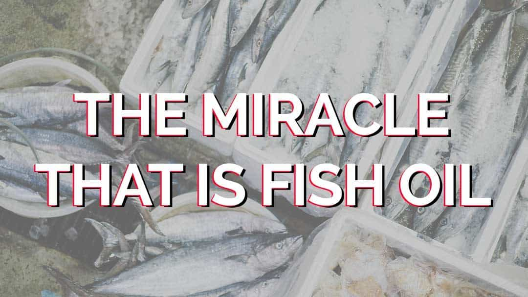 The miracle that is fish oil and why I take it