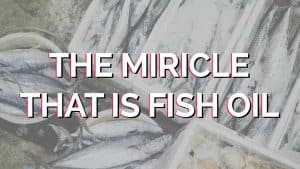 The-miracle-that-is-fish-oil